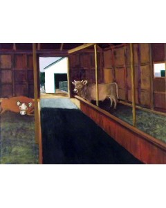 Cow Barn Marshfield Fair