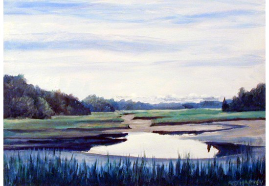 Duxbury Marsh